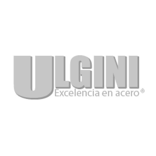 ULGINI